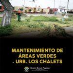 MANTENIMIENTO DE ÁREAS VERDES EN LA URB. LOS CHALETS